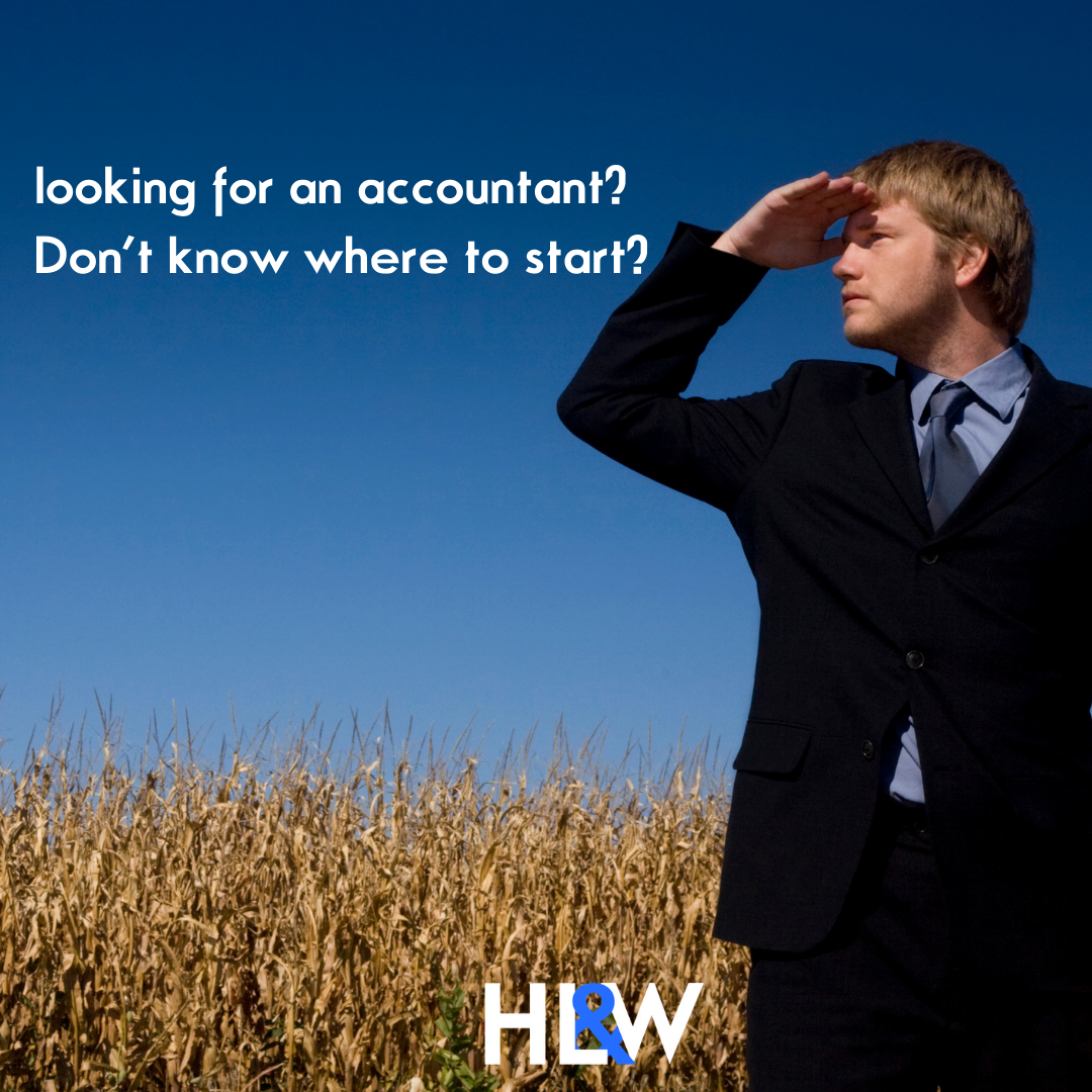 Looking for an accountant?